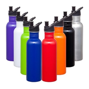 Carnival Stainless Steel Drink Bottle - Includes a 1 Colour Print